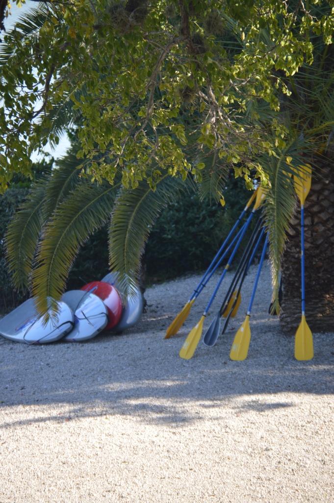 Paddle boards - www.trainwithnicole.net