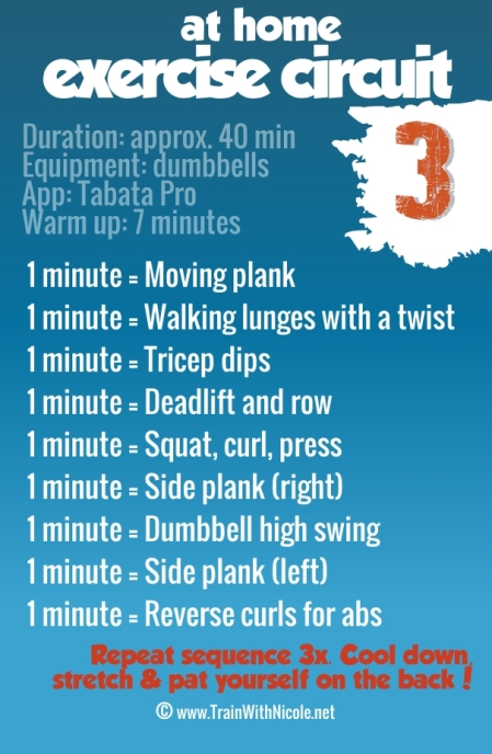 ExerciseCircuit3